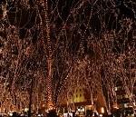 仙台光のページェント2015の日程と場所は?見えるホテルは?