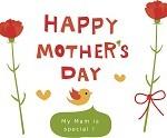 母の日に贈りたいアジサイの鉢植え!花言葉やおすすめの品種は?