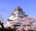 鶴ヶ城公園の桜2017の見頃は?桜祭りやライトアップ情報も!